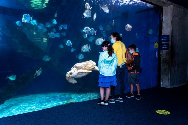 Virginia Aquarium & Marine Science Center Selects US eDirect to Manage its Guest Management